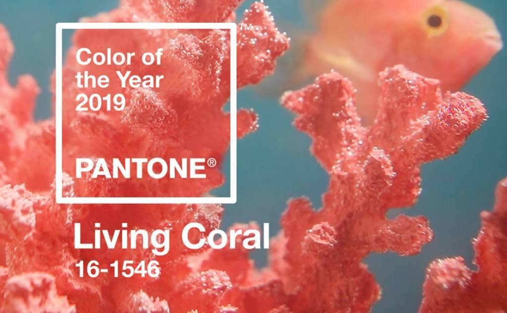 Vivid Coral, el punto de unión entre tecnología y humanidad
